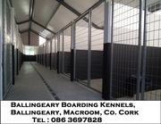 Boarding kennels & Cattery
